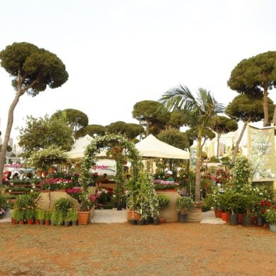 The 15th edition of the Garden Show & Spring Festival is a few weeks away