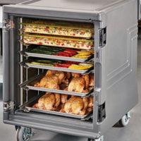 Insulated Holding & Transport Cabinets