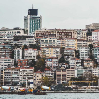 Turkey: weathering the ups and downs