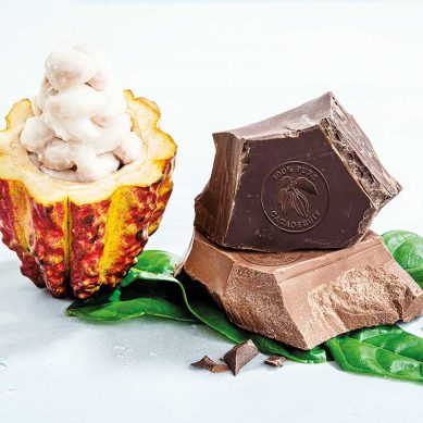 Chocolate Report 2019