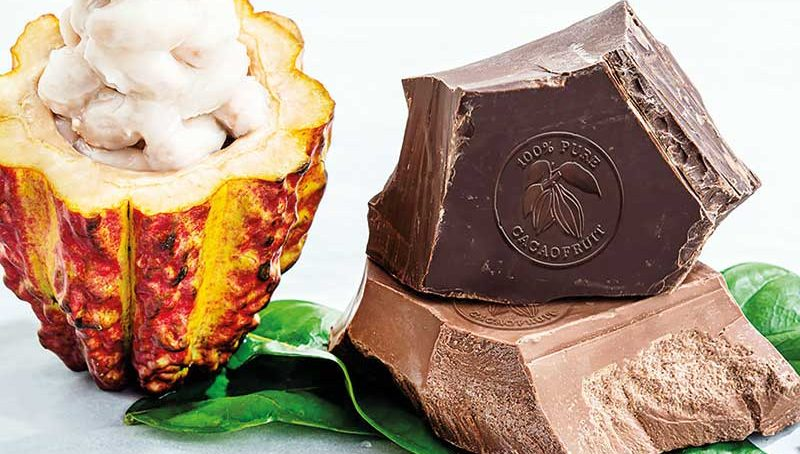 Chocolate Report 2019