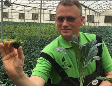 Global Food Industries 'Aqua Kale' to address UAE's growing demand for healthy food
