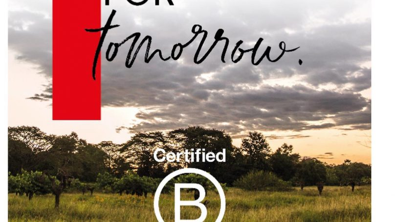 Valrhona joins the B Corporation community for a more sustainable cacao production