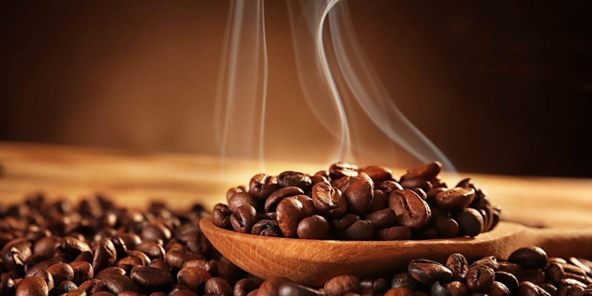 great-coffee-bean-1536x1024