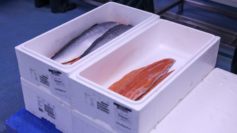 Bidfood acquires major share in wholesale seafood supplier